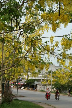 Vientiane_2