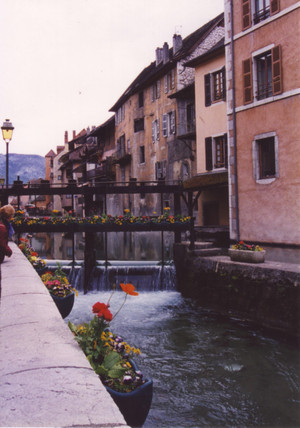 Flowers_in_annecy
