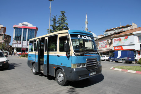 Servis_at_sungurlu
