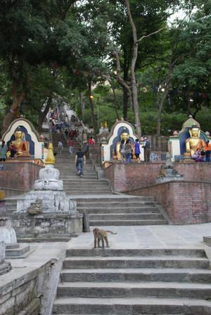 Hill_of_swayambhunath_in_nepal