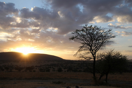 Sunrise_in_serengeti