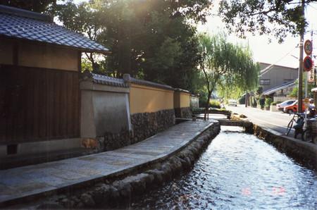 Kamigamo_in_kyoto
