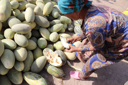Melon_at_the_roadside_near_kunya_ur
